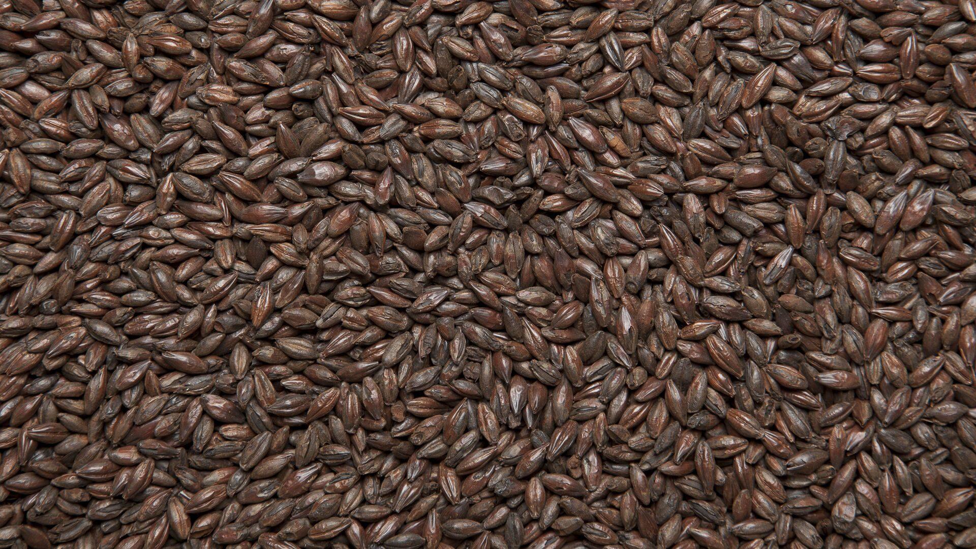 пшеничный солод фото основное, что